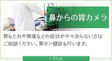 胃カメラ 胃もたれや胃痛などの症状が中々治らない方はご相談ください。胃ガン健診も行います。